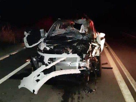 Condutor fica ferido após colidir contra cavalo na BR-361, em Patos; animal morreu