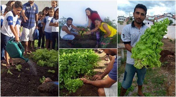 Moradores desenvolvem projeto de horta comunitária no Itatiunga, em Patos