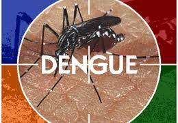 Saúde divulga novo boletim epidemiológico da dengue